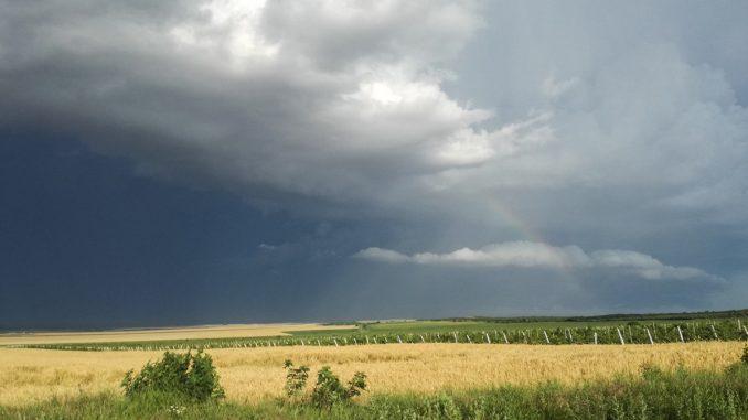 Vine furtuna în zona Valu lui Traian. FOTO Cătălin Schipor / Valureni.ro
