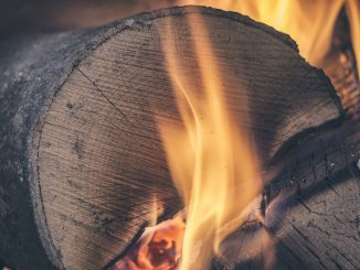 Lemne de foc. FOTO Pexels