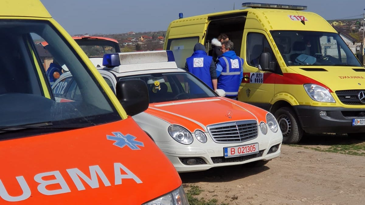 Ambulanțele veterinare au patrulat prin Valu lui Traian. FOTO Primăria Valu lui Traian